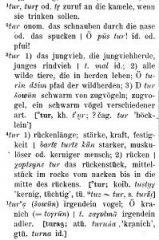 57c069391ff74-Ramstedt-Kalmykisches-Worterbuch411.jpg