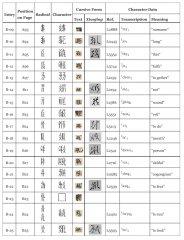 Книга на тангутском языке